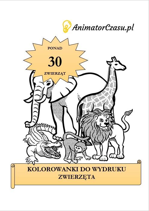 kolorowanka zwierzeta | AnimatorCzasu.pl