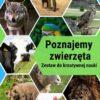 rsz poznajemy zwierzĘta | AnimatorCzasu.pl