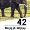 fiszki obrazkowe | AnimatorCzasu.pl